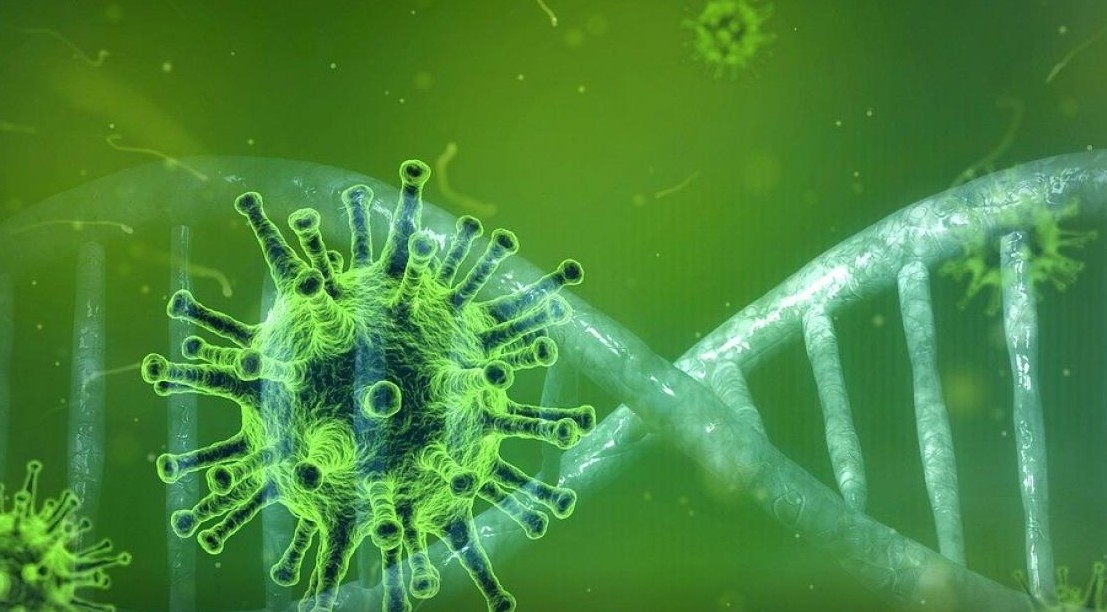 Aká je schopnosť korona vírusu útočiť aprežiť?