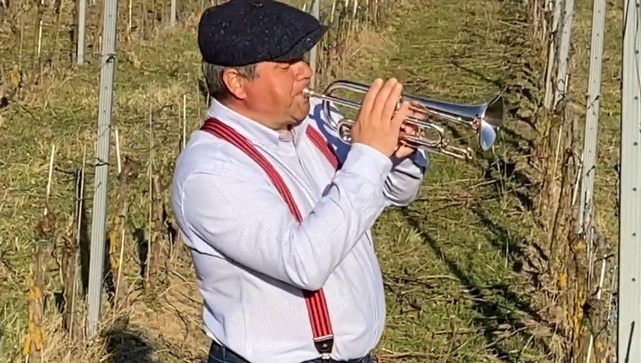 Ako pestovať vinič a dorobiť víno hovorí Roman Feder