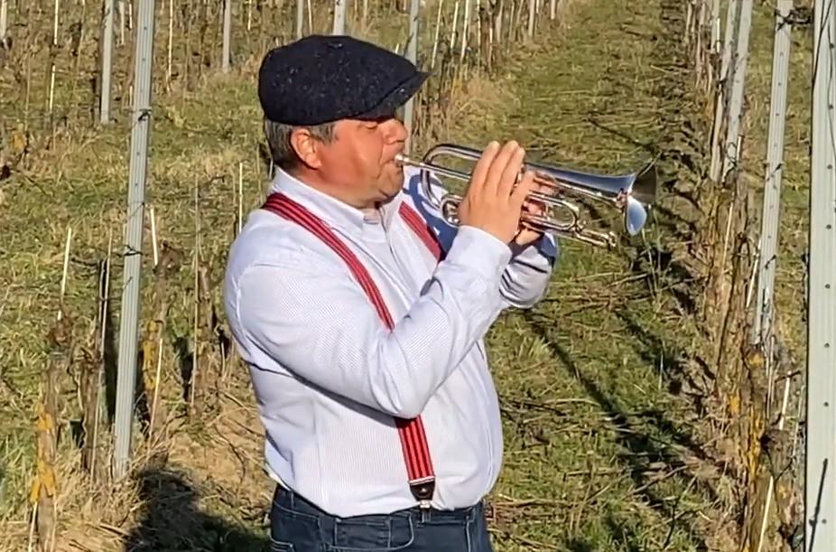 Ako pestovať vinič a dorobiť víno