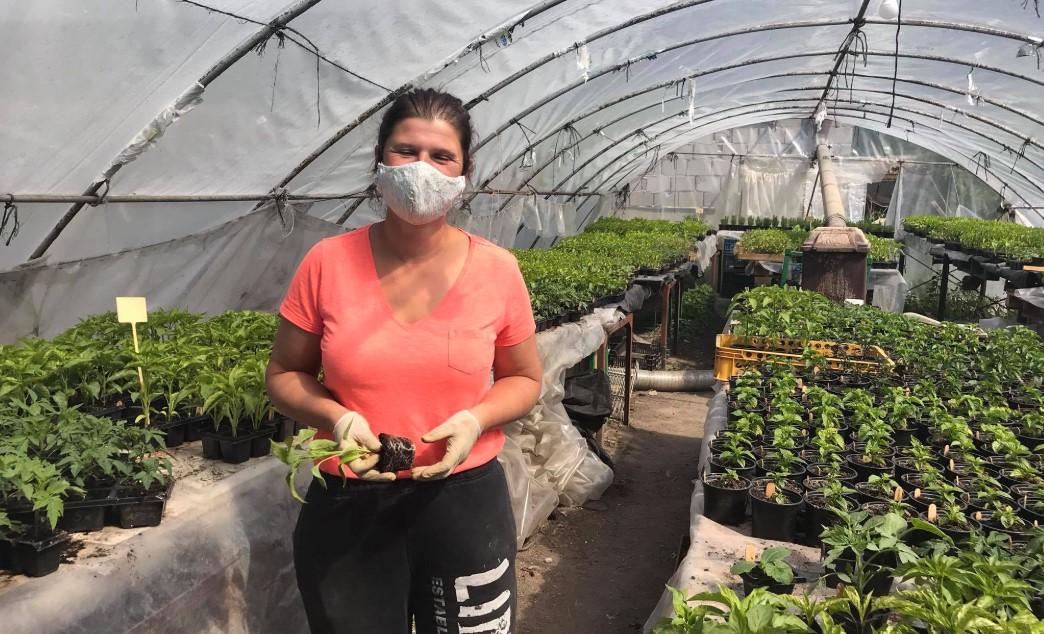 Martina Šebeňová –vlastné paradajky, paprika, uhorky či cukina