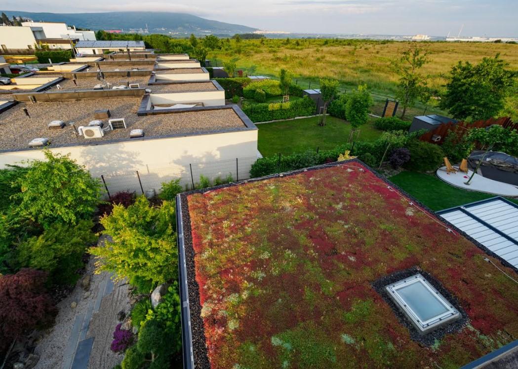 Dokážu zelené strechy pomôcť zlepšeniu klímy?
