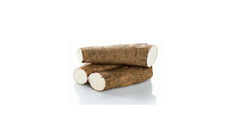 Tapiokaje vynikajúca bezlepková potravina koreň