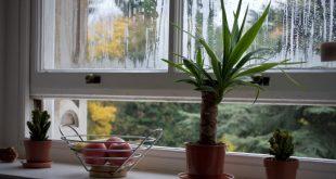 Vetranie miestnosti vás zbaví škodlivín
