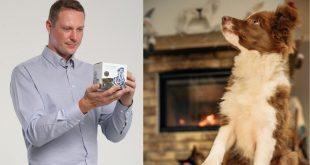 Ako vybrať kolagén pre psa