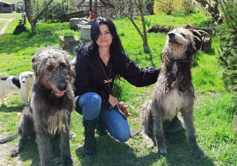 Starostlivosť o psa a vhodný kolagén